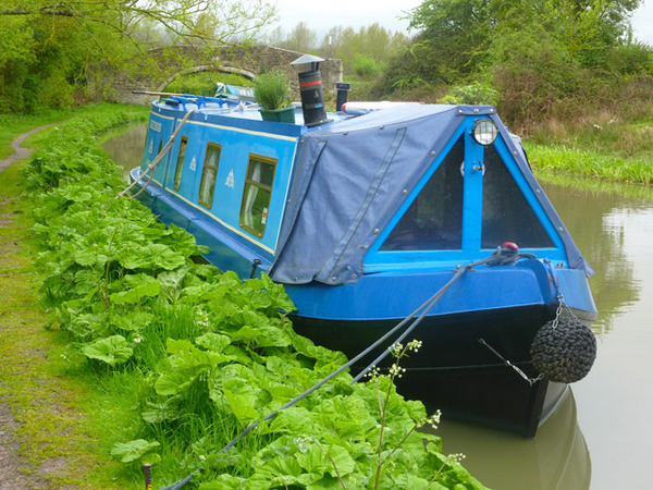 Narrowboat Blue Moon