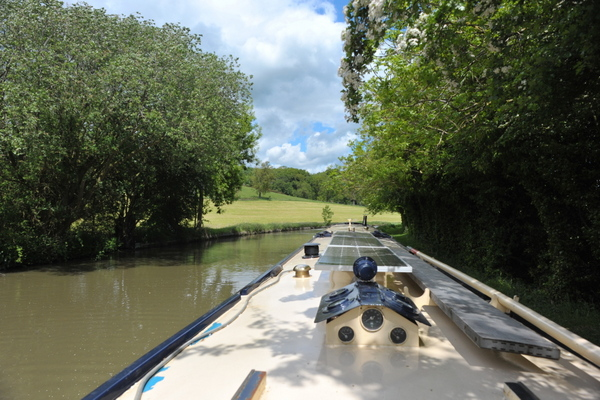 The view of Kicklewood Spinney from our mooring