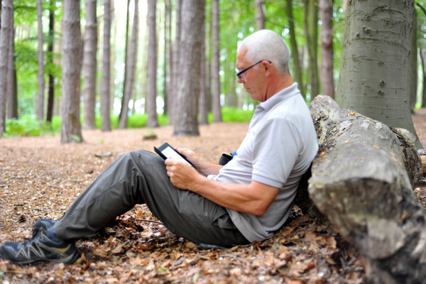 A quiet spot to rest and read in Hopwas Hayes Wood