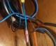 which-wire.jpg