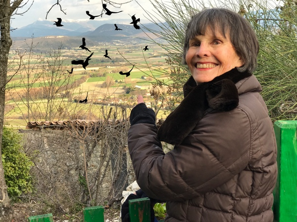 Imaginary birds flock over a French hillside village