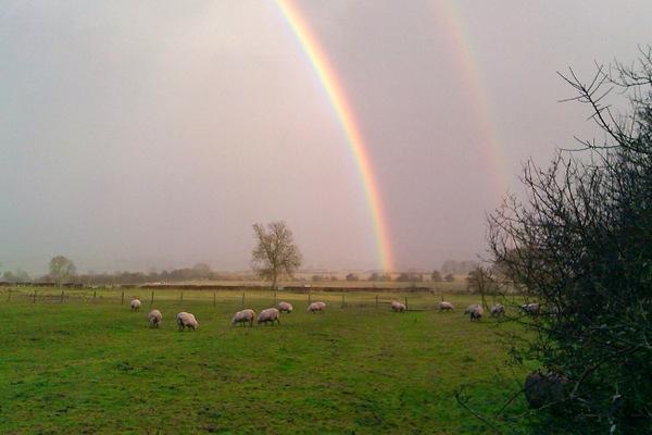 A rainbow over Flecknoe