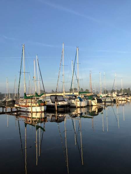 The marina at dawn