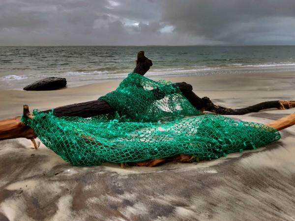 La Teste-de-Buch beach debris