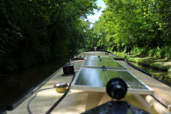 Cruising through Gopsall wood on the Ashby canal
