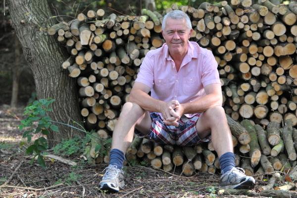Willow log pile