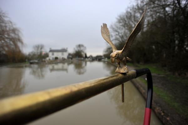 My fancy eagle tiller pin